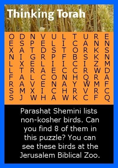 Shemini Puzzle